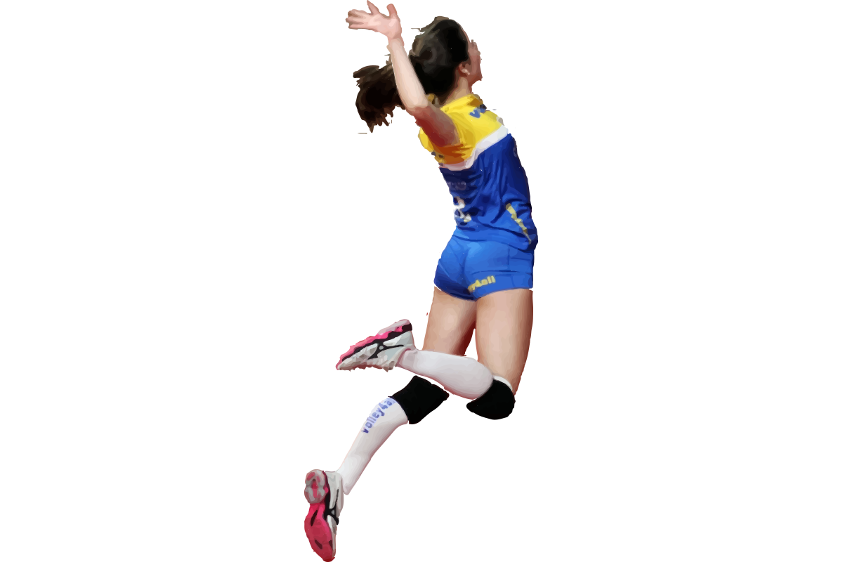 https://volley4all.com/wp-content/uploads/2019/05/Ilustracao-volley2a.png