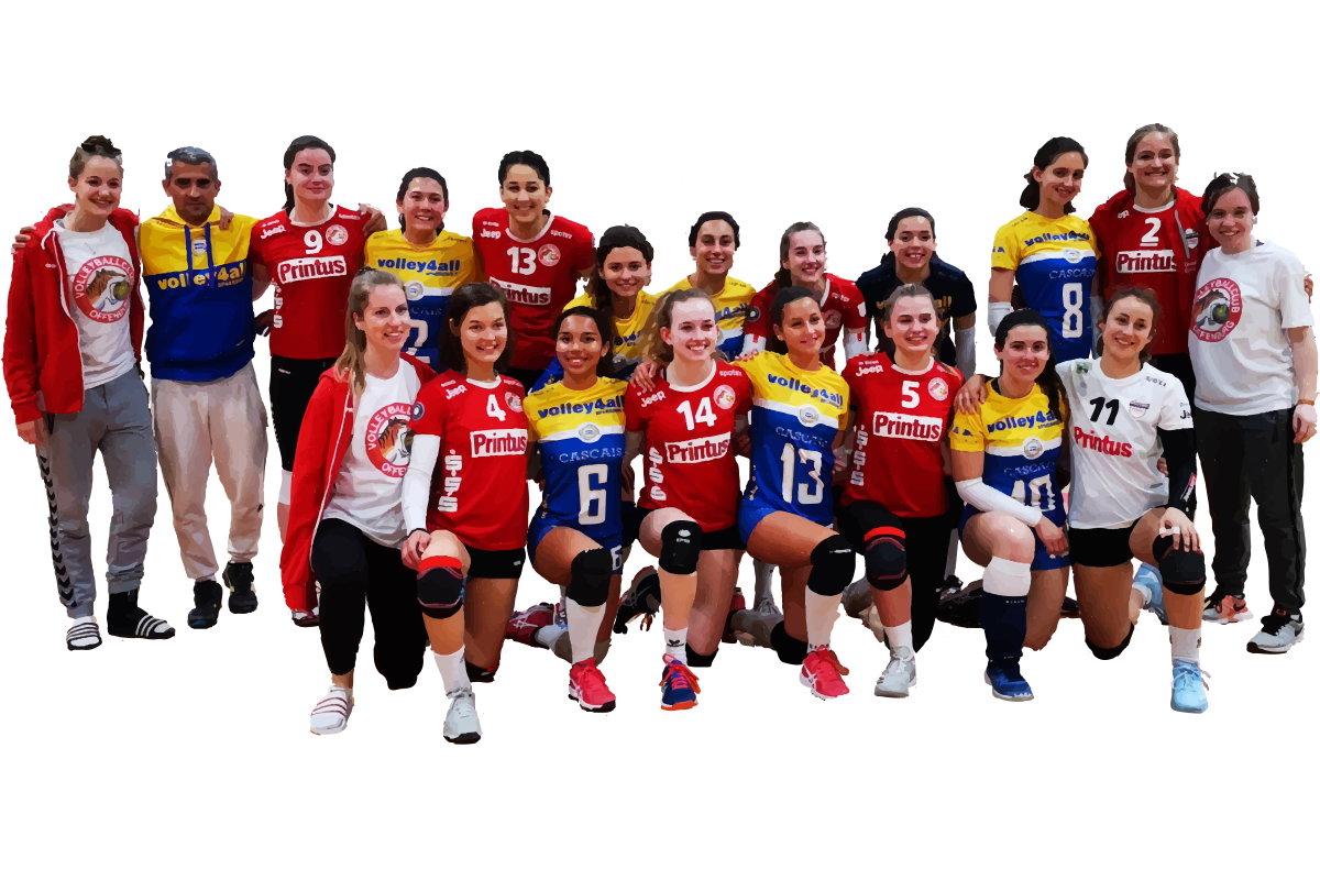 https://volley4all.com/wp-content/uploads/2019/05/Ilustracao-volley3a.png