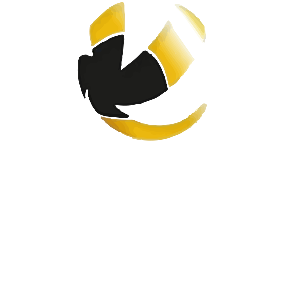 https://volley4all.com/wp-content/uploads/2019/05/conquistas1.png