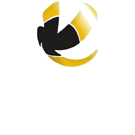 https://volley4all.com/wp-content/uploads/2019/05/conquistas3.png