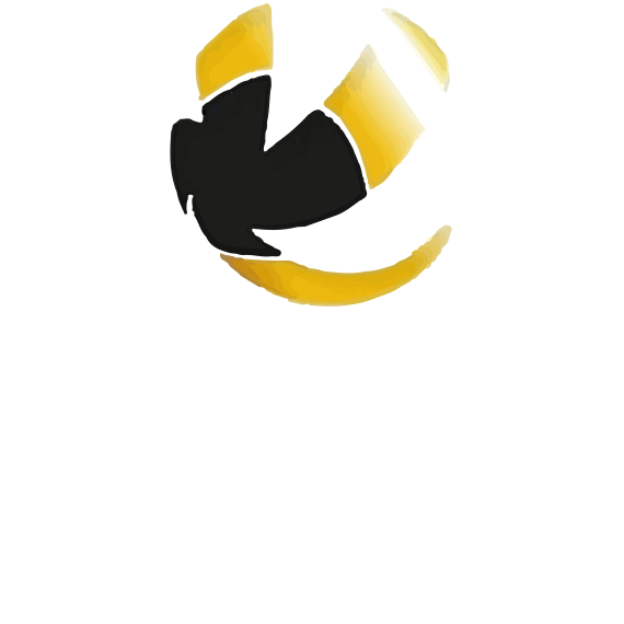 https://volley4all.com/wp-content/uploads/2019/05/conquistas7.png