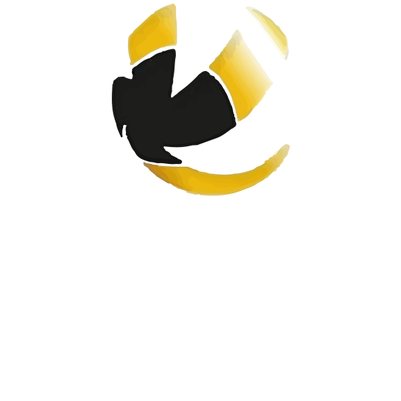 https://volley4all.com/wp-content/uploads/2019/05/conquistas8.png