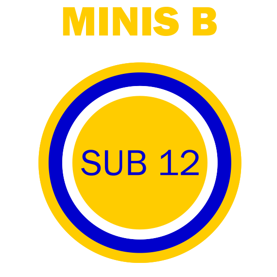 https://volley4all.com/wp-content/uploads/2019/05/equipas_volley4all-sub12-minis-B.png