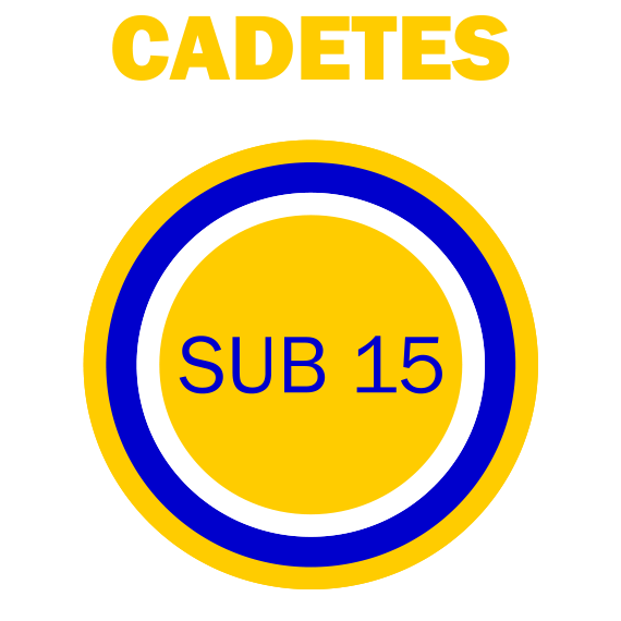 https://volley4all.com/wp-content/uploads/2019/05/equipas_volley4all-sub15-cadetes.png