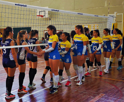 https://volley4all.com/wp-content/uploads/2019/06/loja1.png