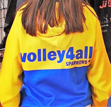 https://volley4all.com/wp-content/uploads/2019/06/loja2c.png