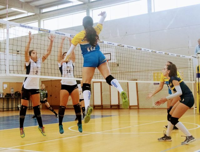 Volley4all 0   LVC 3